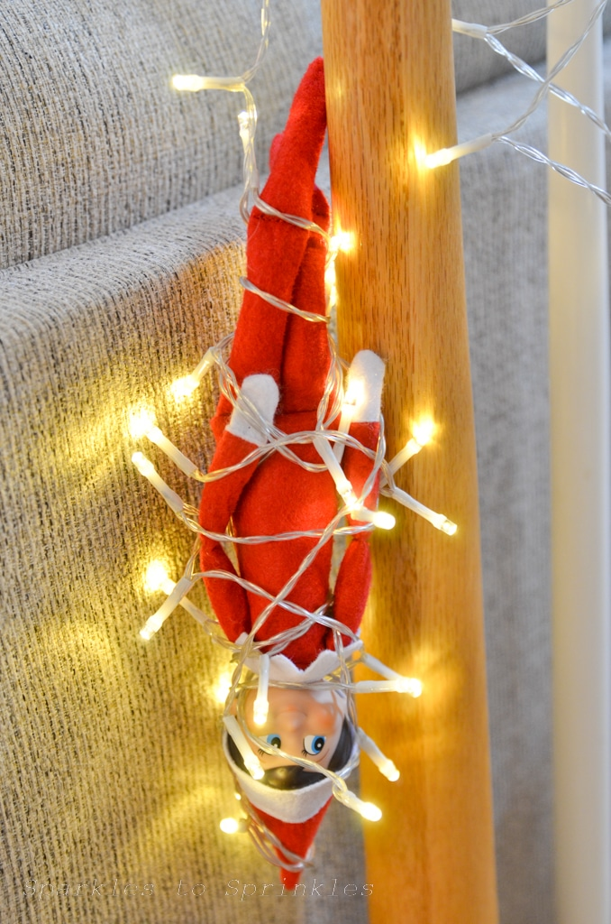 elf on the shelf haning in lights