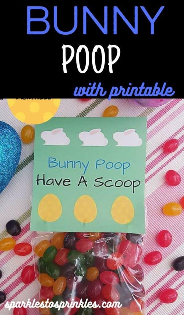 bunny poop pin