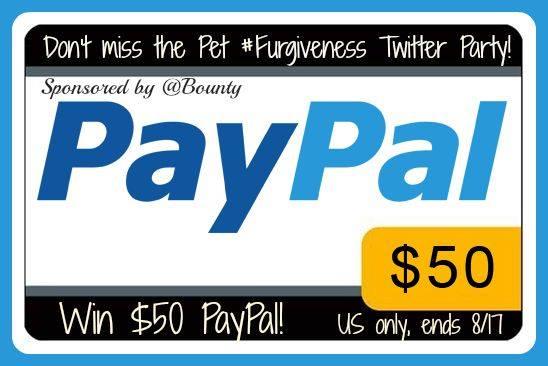 paypal-furgiveness