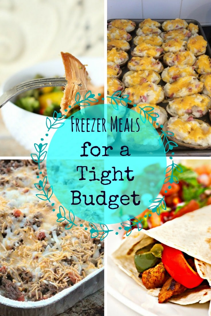 20 Easy Freezer Meals For A Tight Budget Sparkles To