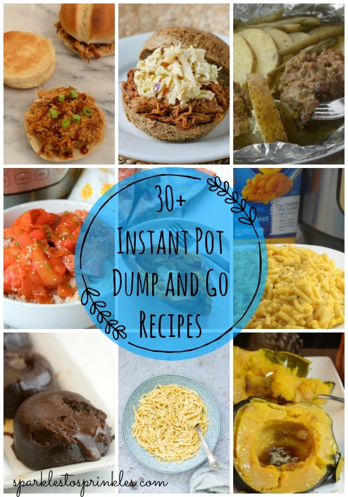 30+ Instant Pot Dump and Go Recipes