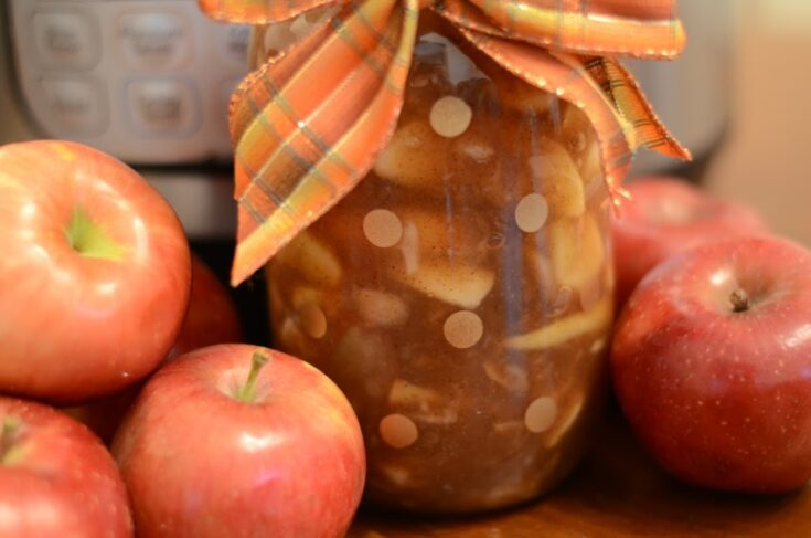 Instant Pot Best Apple Pie Filling