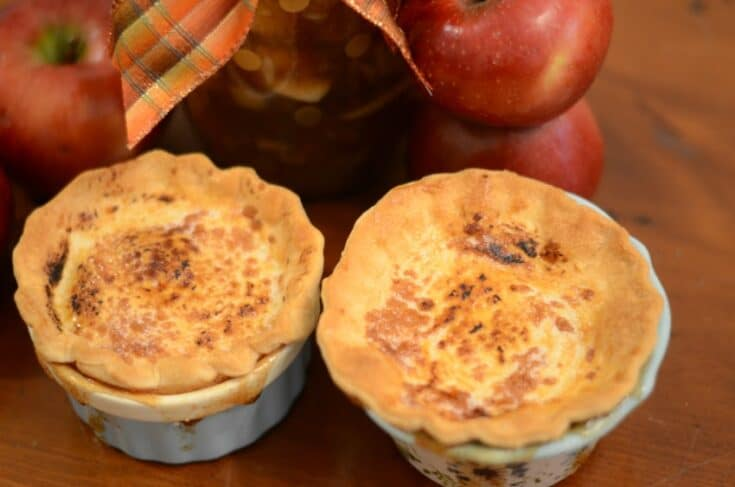 Instant Vortex Plus Air Fryer Ramekin Apple Pies