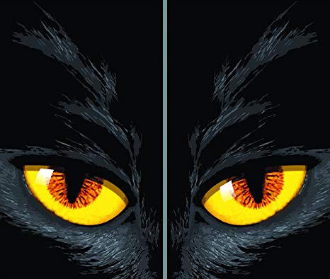 "Window Poster Halloween Yellow Cat Eyes by WOWindows USA-made Decoration Includes 2 Reusable 34.5""x60"" Backlit Posters"