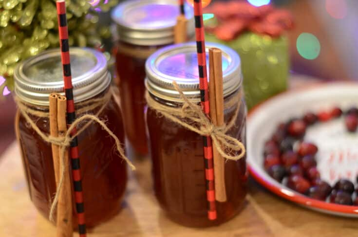 Instant Pot Cranberry Moonshine