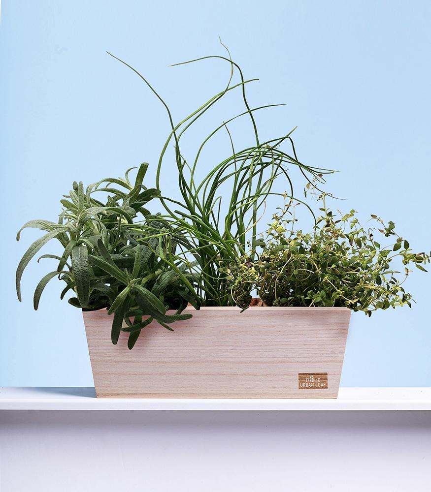 garden kit